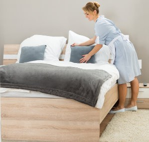 How Does A Professional Carpet Cleaner Clean A Mattress?