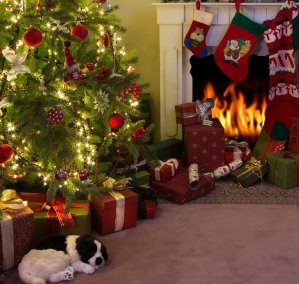 Christmas Carpet and Upholstery Cleaning