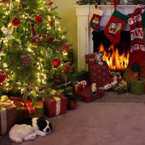 Christmas Carpet Cleaning Dublin